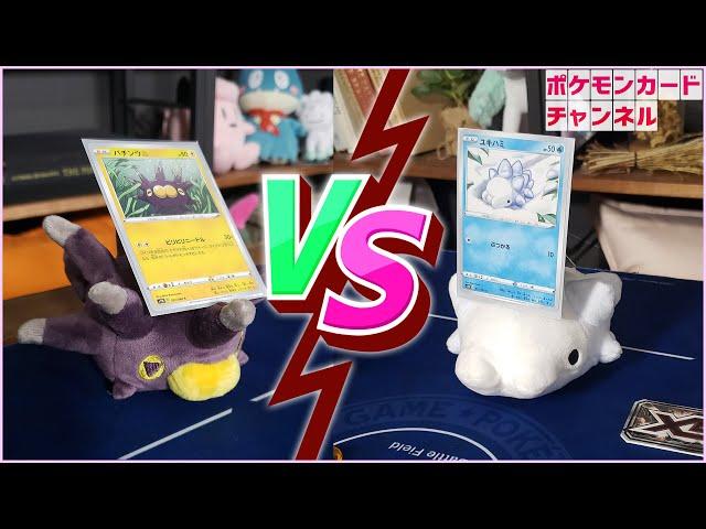 公式chで「【Pokémon Stop Motion】もしもポケモンのぬいぐるみ達がポケカで対戦したら・・・【ポケカ対戦】」公開!